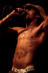 Afu-Ra: The Art  Of Hip Hop