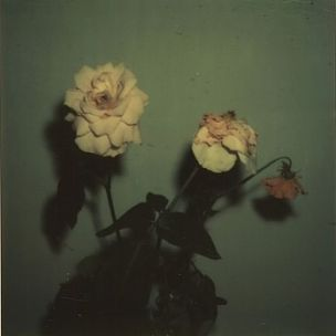 """Blu & Exile To Officially Release """"Give Me My Flowers While I Can Still Smell Them"""""""