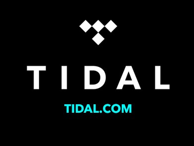 Jay Z's TIDAL Fires Two Executives