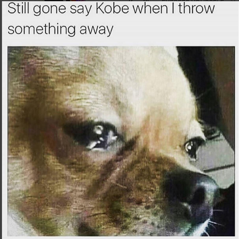 Kobe-Last-Game-Meme