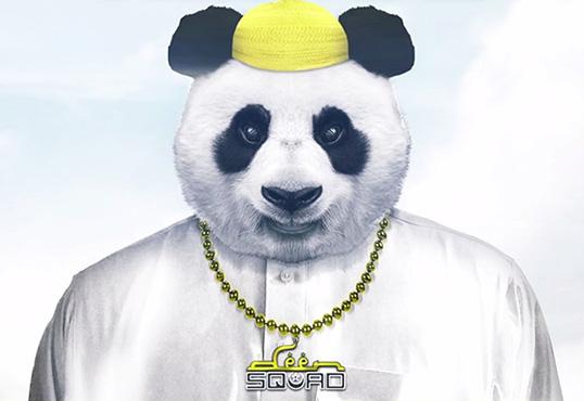 """The 10 Weirdest """"Panda"""" Remixes"""