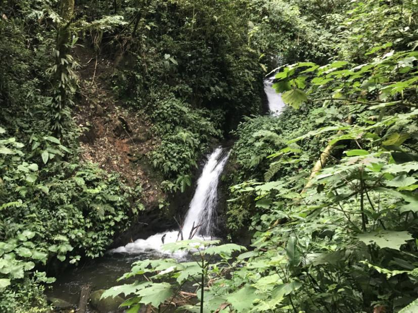 "#FOMOBlog: Childish Gambino's ""Awaken My Love"" Is The Perfect Soundtrack To Costa Rica"