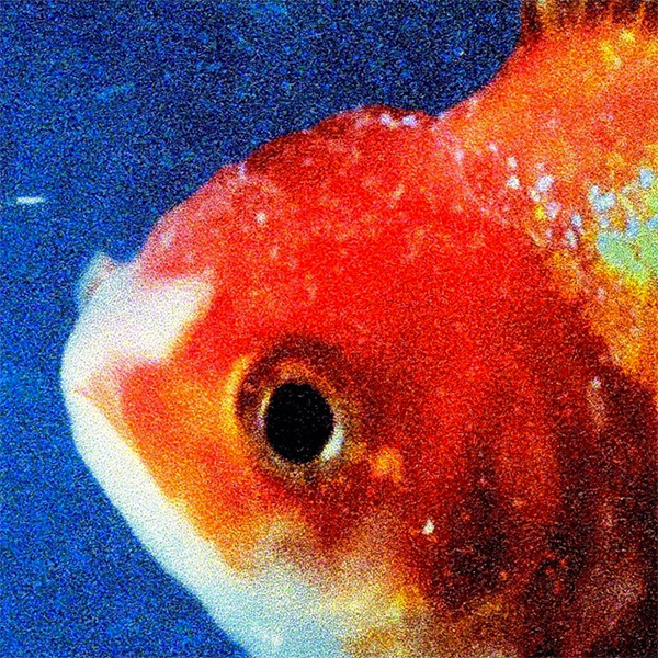 Vince Staples Big Fish Theory Cover