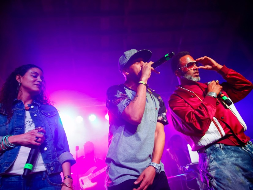 "Digable Planets' Butterfly Never Tires Of ""Rebirth Of Slick (Cool Like Dat)"""