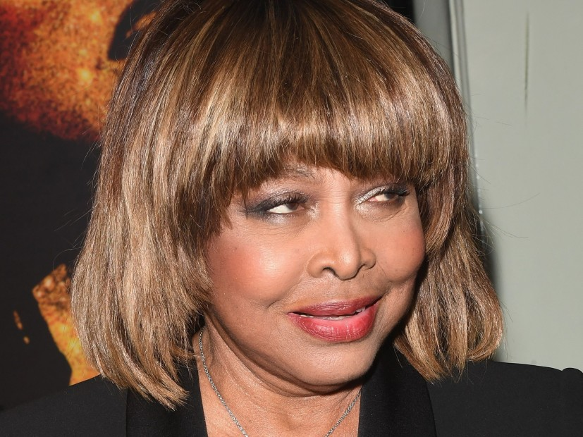 Tina Turner's Son Reportedly Dies By Suicide