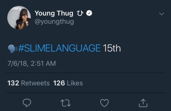 young thug slime language