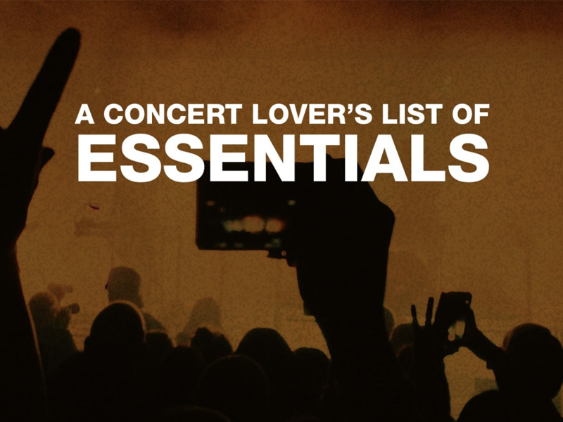Everything You Need To Dominate A 2019 Concert Is Here