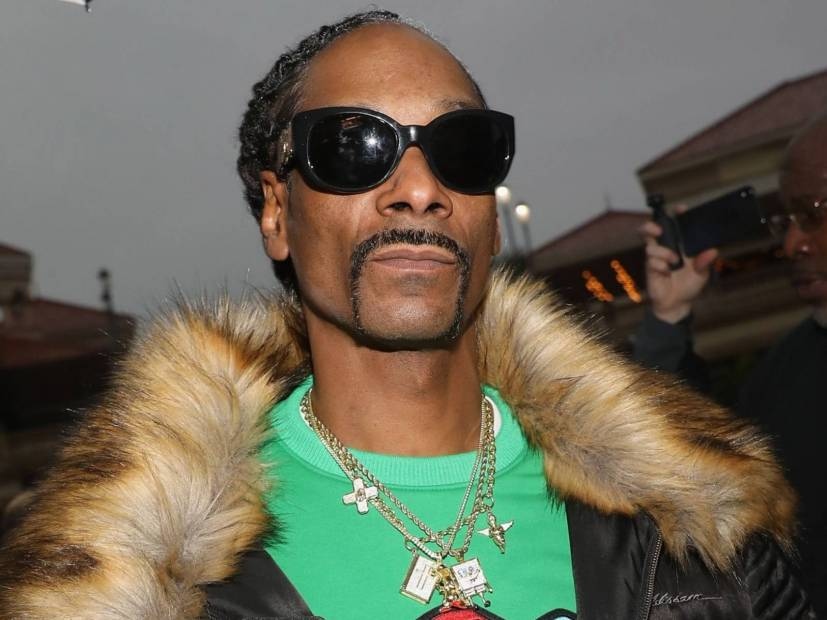 Snoop Dogg Chastises Retired Weed-Smoking David Irving