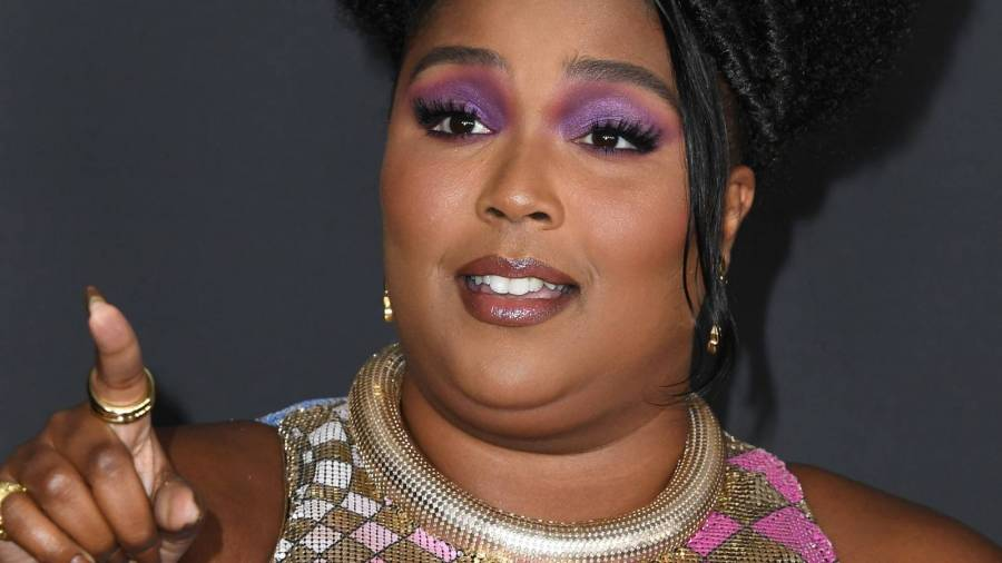 Lizzo Confronts TikTok Rumor She Does Deadly Stage Dives With Her Weight